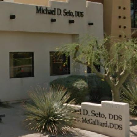 Dr. Michael D Seto
