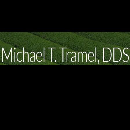 Dr. Michael T Tramel