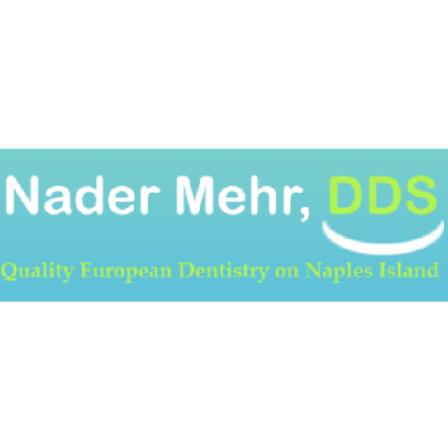 Dr. Nader B Mehr