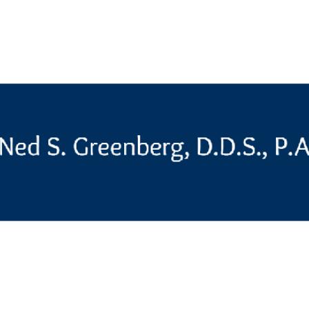 Dr. Ned S Greenberg