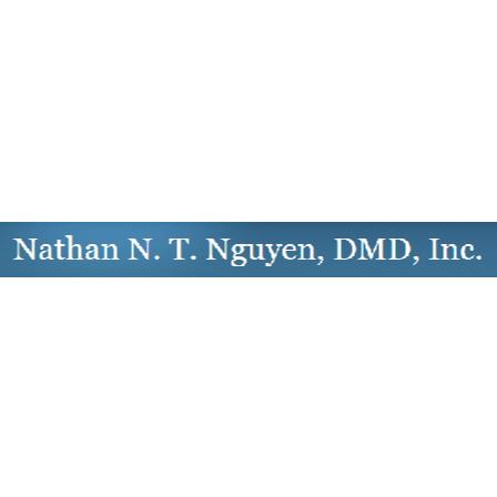 Dr. Nguyen T Nguyen