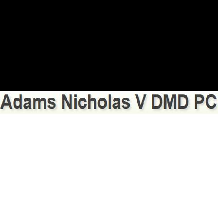Dr. Nicholas V Adams