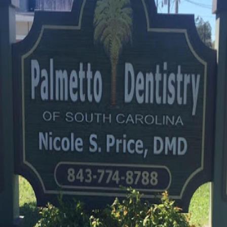 Dr. Nicole S Price