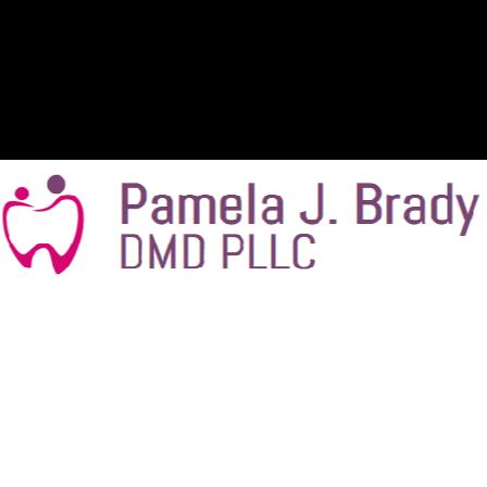 Dr. Pamela J Brady