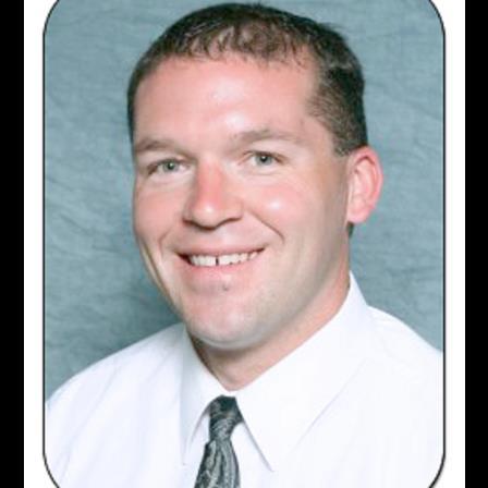 Dr. Patrick J Merritt