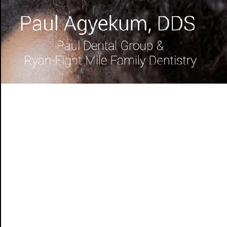 Dr. Paul A. Agyekum