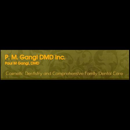 Dr. Paul M Gangi