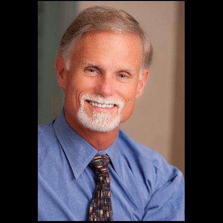 Dr. Paul S Herrin