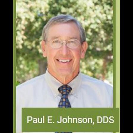 Dr. Paul E Johnson