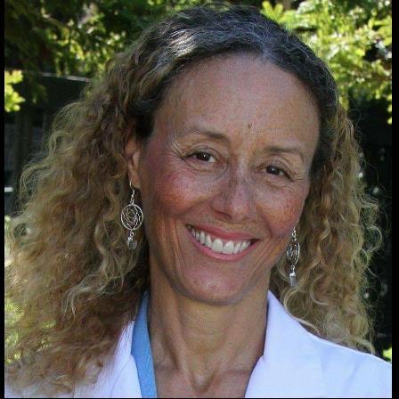 Dr. Paula J Moore-Roemer