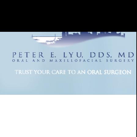 Dr. Peter E Lyu