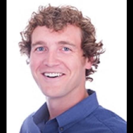 Dr. Peter D Smidt