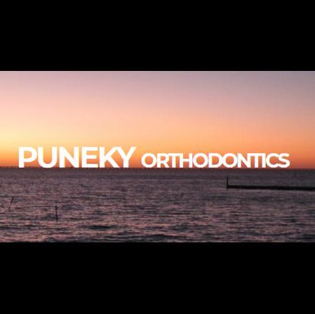 Dr. Philip J Puneky