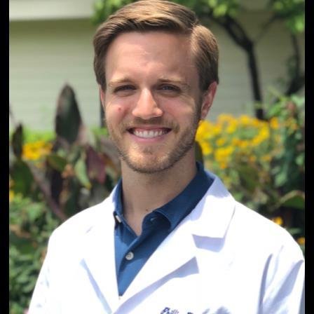 Dr. Phillip M Platt