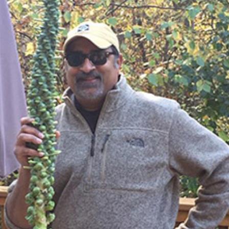 Dr. Pranav N. Pandya