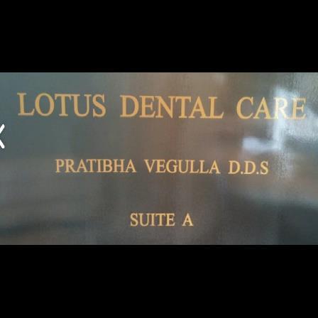 Dr. Pratibha Vegulla