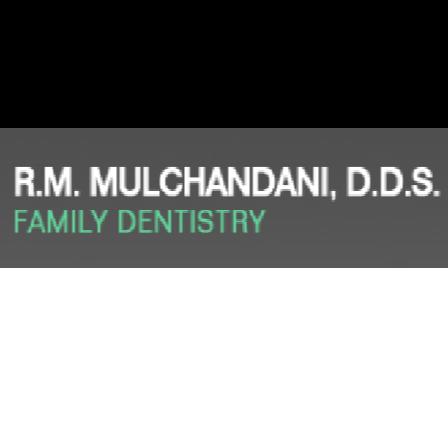 Dr. Ramesh M Mulchandani