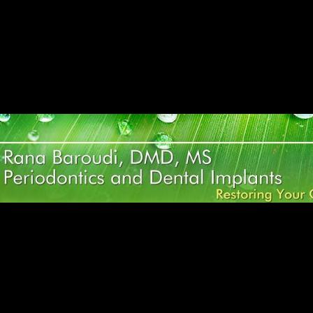 Dr. Rana Baroudi