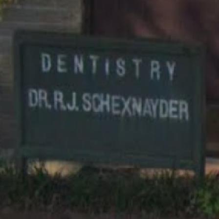 Dr. Raymond J Schexnayder