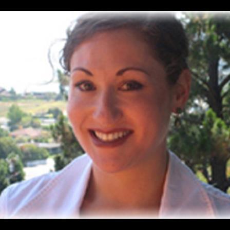 Dr. Rebecca E Armel