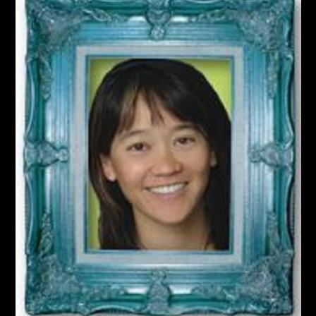Dr. Rebecca C Lee