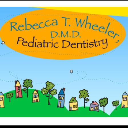 Dr. Rebecca T Wheeler