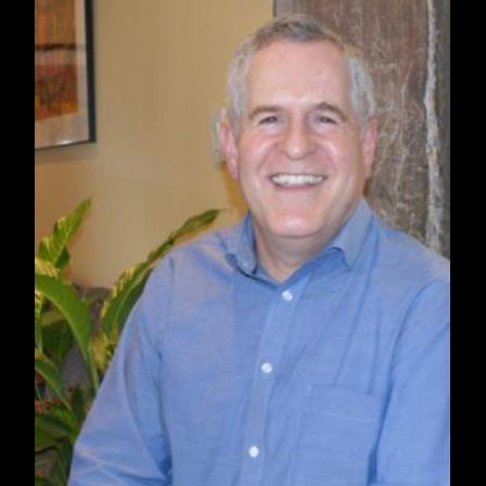 Dr. Richard M Janis
