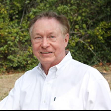 Dr. Richard H Real, Jr.