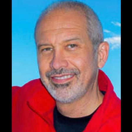 Dr. Richard J Tananis