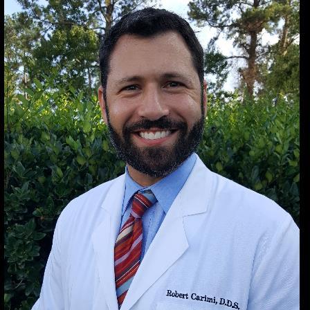 Dr. Robert V Carimi, Jr.