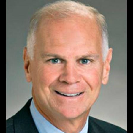 Dr. Robert G Savarese