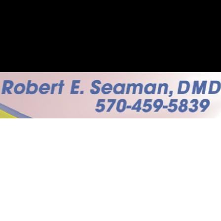 Dr. Robert E Seaman