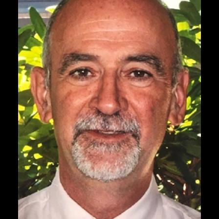 Dr. Robert Weeman