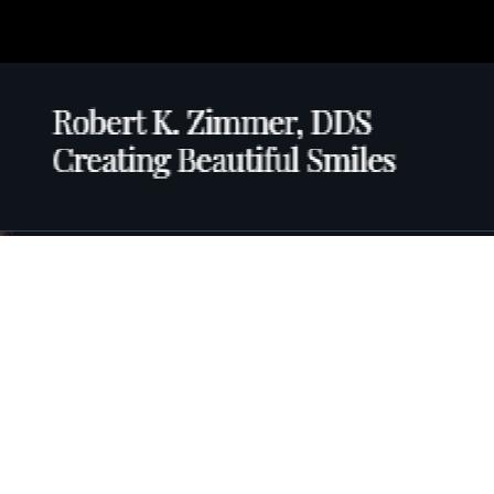 Dr. Robert Zimmer