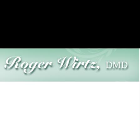 Dr. Roger S Wirtz