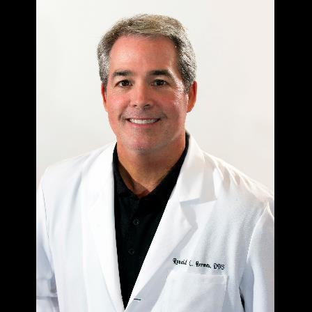 Dr. Ronald C Hermes