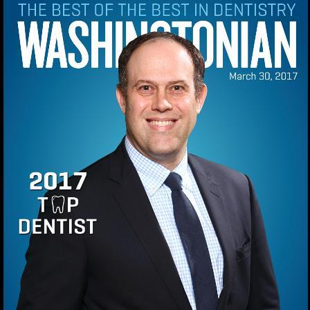 Dr. Rustin M Levy