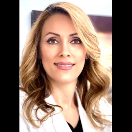 Dr. Samira Shenasi