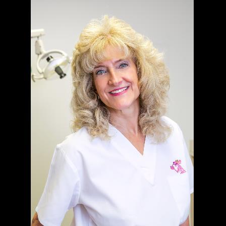 Dr. Sandra D Picazio