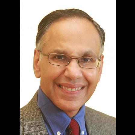 Dr. Sanjay K Kamodia