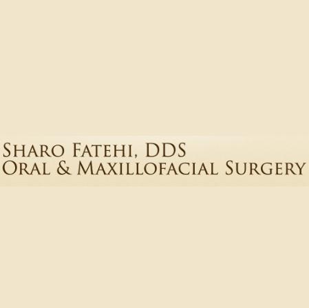 Dr. Schahrokh Fatehi