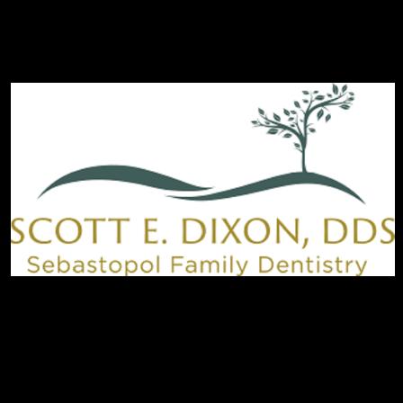 Dr. Scott E Dixon