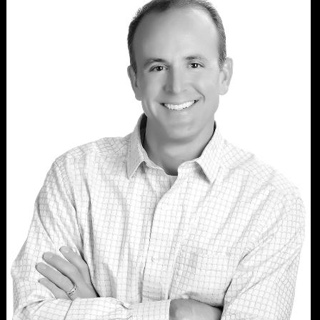 Dr. Scott J Eberle
