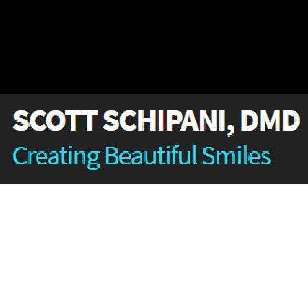 Dr. Scott A Schipani