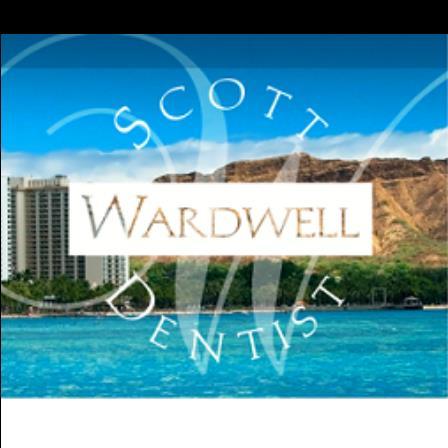 Dr. Scott A Wardwell