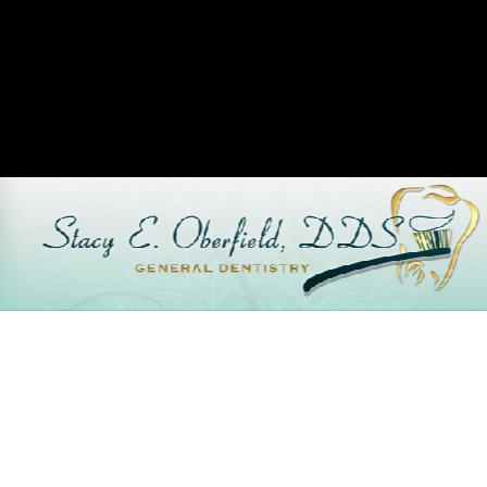 Dr. Stacy E Oberfield