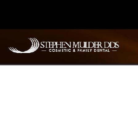 Dr. Stephen E. Mulder