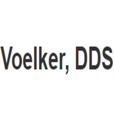 Dr. Steve E Voelker