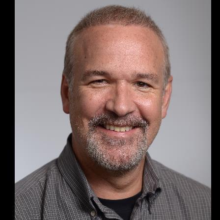 Dr. Steven E Penn