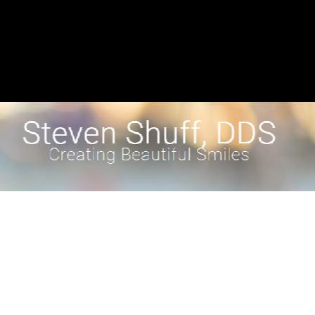 Dr. Steven L Shuff